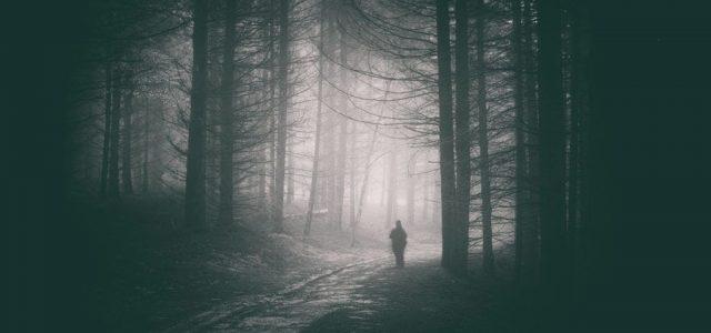 Egy állapotos rendőrnőt bezártak, egy másikat az erdőben hagytak férfi kollégáik