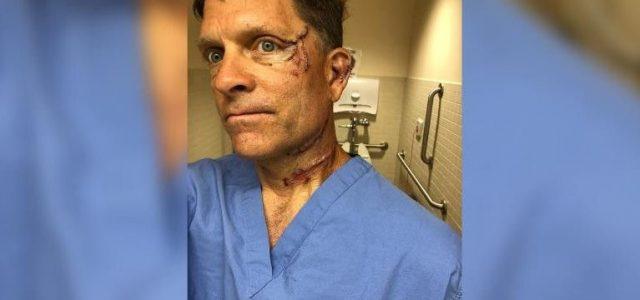Otthonában támadt rá egy medve egy coloradói férfira