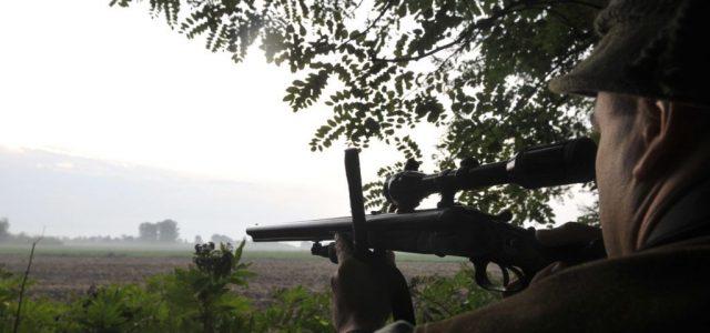 Őrizetbe vettek egy vadászt Siófokon, akinél engedély nélkül tartott fegyver és hangtompító volt