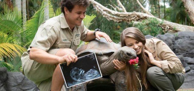 Cuki képpel jelentették be Bindi Irwinék, hogy kislányuk fog születni