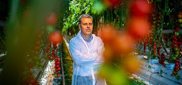 Ma már savanyúnak éreznénk a nagyi paradicsomát – így formálódik a zöldségeink íze
