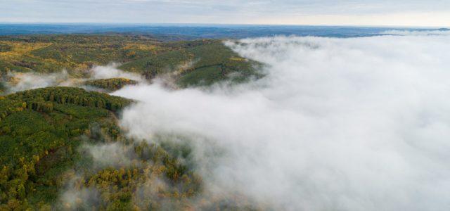 Az egész országra figyelmeztetést adtak ki sűrű köd miatt