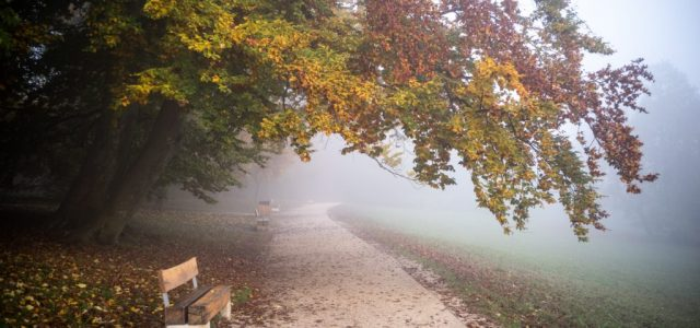 Tartós, sűrű köd várható az egész országban szerdán
