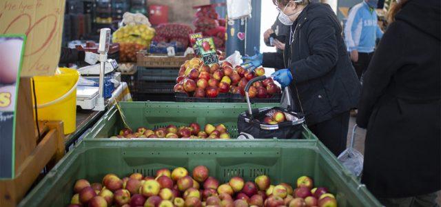 Rázúdították a piacra az olcsó lengyel almát, de nem biztos, hogy tartósan lenyomja az árakat