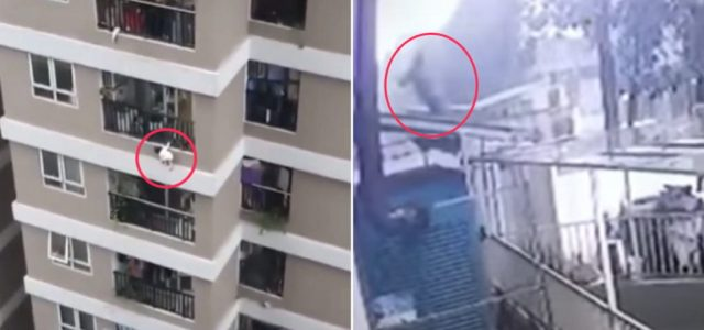 Videón, ahogy kiesik a 12. emeletről egy kétéves gyerek – és ahogy elkapja egy férfi