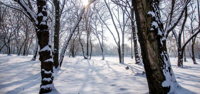 Havazott ma a Mátrában